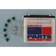 Standard 12-Volt Battery - RC60N24LA