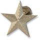 Brass Nautical Star Enrichener Knobs for S&S Carbs - NSCHOKEBRS