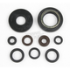 Engine Oil Seal Set - 50-1041