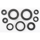 Oil Seal Set - 0935-0020