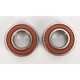 Rear Wheel Bearing Kit - PWRWK-G02-001