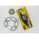 525ZRP OEM Chain and Sprocket Kits - 7ZRP110KKA01