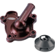 Water Pump Cover with Impeller - WPH04250