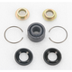 Shock Bearing Kit - 1313-0009
