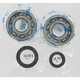 Crank Bearing/Seal Kit - 0924-0002