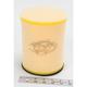 Air Filter - DT1-3-80-14