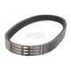 XTX (Extreme Torque) Belt - XTX5042