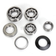 Transmission Bearing Kit - TBK0003