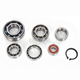 Transmission Bearing Kit - TBK0102
