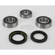 Rear Wheel Bearing and Seal Kit - PWRWS-Y19-000
