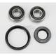 Front Wheel Bearing and Seal Kit - PWFWS-K20-000