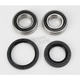 Front Wheel Bearing and Seal Kit - PWFWS-Y12-000