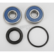 Rear Wheel Bearing and Seal Kit - PWRWS-H25-000