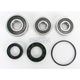 Rear Wheel Bearing and Seal Kit - PWRWS-H47-000