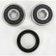 Rear Wheel Bearing and Seal Kit - PWRWS-H63-000