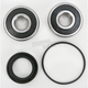Rear Wheel Bearing and Seal Kit - PWRWS-H65-000