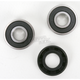 Rear Wheel Bearing and Seal Kit - PWRWS-H74-000