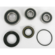 Rear Wheel Bearing and Seal Kit - PWRWS-K18-000
