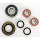 Rear Wheel Bearing and Seal Kit - PWRWS-S28000