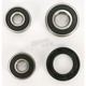 Rear Wheel Bearing Kit - PWRWS-S39-000