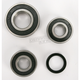 Rear Wheel Bearing Kit - PWRWS-S40-000