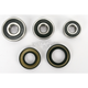 Rear Wheel Bearing and Seal Kit - PWRWS-Y28-000
