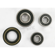 Rear Wheel Bearing and Seal Kit - PWRWS-Y30-000