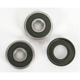 Rear Wheel Bearing and Seal Kit - PWRWS-Y31-000