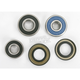 Rear Wheel Bearing and Seal Kit - PWRWS-Y38-000