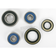 Rear Wheel Bearing and Seal Kit - PWRWS-Y39-000