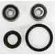 Front Wheel Bearing Kit - PWFWK-H42-350