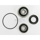 Rear Wheel Bearing Kit - PWRWK-H46-250