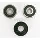 Front Wheel Bearing Kit - PWFWK-S30-000