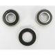 Front Wheel Bearing Kit - PWFWK-Y33-001
