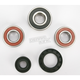 Rear Wheel Bearing Kit - PWRWK-K20-000