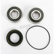 Rear Wheel Bearing Kit - PWRWK-S28-000