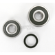 Rear Wheel Bearing Kit - PWRWK-S51-000