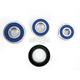 Rear Wheel Bearing and Seal Kit - 25-1489