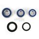 Rear Wheel Bearing and Seal Kit - 25-1650