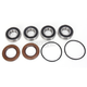 Rear Wheel Bearing Kit - PWRWK-C07-000
