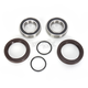 Rear Wheel Bearing Kit - PWRWK-C10-000