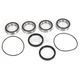 Rear Wheel Bearing Kit - 301-0384