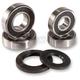 Rear Wheel Bearing Kit - PWRWS-K28-000