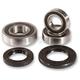 Rear Wheel Bearing Kit - PWRWS-S42-000