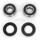 Front Wheel Bearing Kit - PWFWK-H53-000