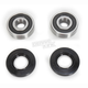 Rear Wheel Bearing Kit - PWRWK-H68-000