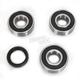 Rear Wheel Bearing Kit - PWRWK-S30-000