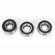 Rear Wheel Bearing and Seal Kit - PWRWS-HD05-000