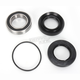 Rear Wheel Bearing Kit - PWRWK-H71-000