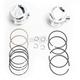 Piston Kit for S&S 100/107 in. Motors - 92-1401